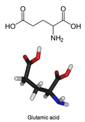 Glútamín